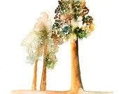 Redwoods- Landscape painting-Watercolor-Glicee print-Home decor-poster print-Archival Print from my original watercolor painting 8x10 inch