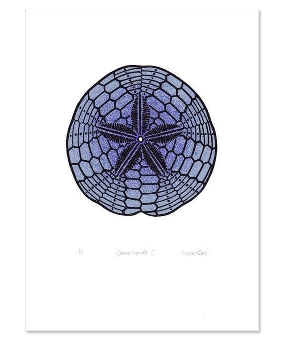 Sand Dollar / Clypeasteroida II 'specimen' (dark) - Limited edition three-colour screenprint