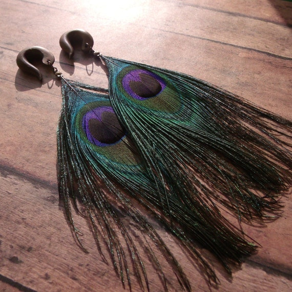 Peacock Feather Gauges