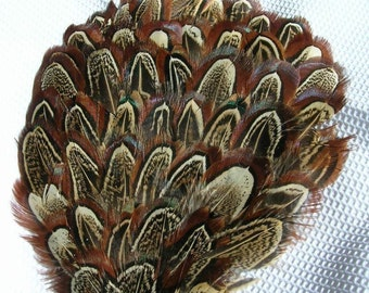 NATURAL Almond Feather Pad Applique. DIY craft item for millinery, masks, costumes, hats, headdresses, headbands and hairclips (1 Appliqué)