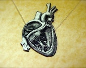 dissected anatomical human heart necklace