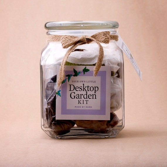 Large Deluxe Jar Terrarium Kit