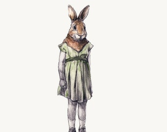 little rabbit-sensitive observer -- rabbit print