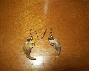 Real wolverine claw earrings Native American Made