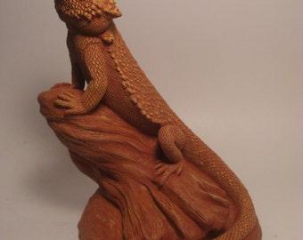 Bearded Dragon 3 Piece Special!