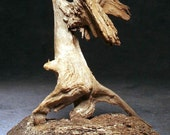 Blue Heron Stretch