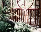 Garden Photography asian tranquility serenity japanese meditation horticulture yoga mediate red pagoda - Zen garden - fine art photograph