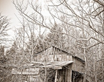 Simple life Photography rustic moonshine backwoods shack shanty liquor still ghost town rusty barn - The shine house - fine art photograph