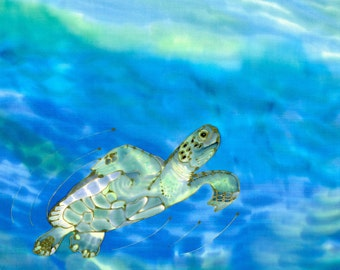 Beautiful Swimmer Sea Turtle