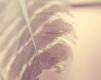 Feather print, boho nursery art, bohemian art photography, brown wall art photos, feather photos, boho wall art girls room, brown art