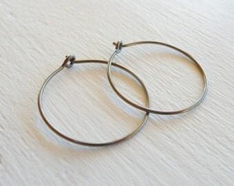 Medium Niobium Hoops for Sensitive Ears, Nickel Free Hoop Earrings, Hypoallergenic Hoops Earing, No Allergy Niobium Silver Hoop Earrings
