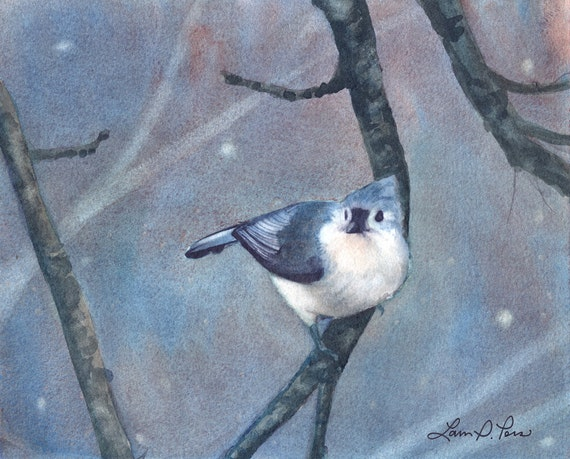 Tufted Titmouse Watercolor Painting - Fine Art Archival Print - Limited Edition Bird Art by Laura D. Poss