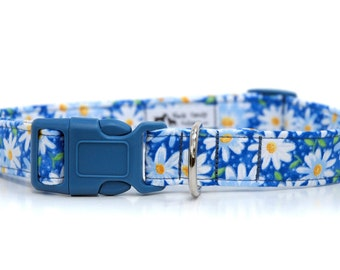Daisy Duke,,,, Custom Dog Collar