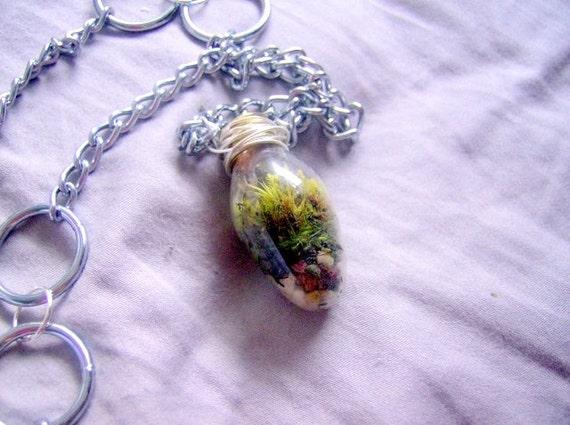 Mini Lightbulb Moss Pendant, Terrarium Necklace, Live Necklace, Live plant pendant, light bulb pendant