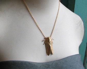 the cicada necklace