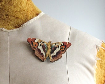 orange owlet moth brooch pin