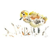 Yellow, Nursery Art, Baby Bird, Duckling Print, Baby Art, Baby Decor, Bird Nursery Art, Bird Nursery Print
