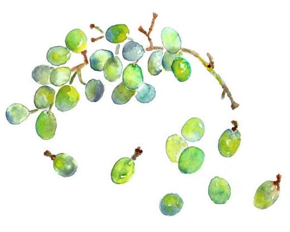 Green, Kitchen Decor, Green Kitchen Wall Art, Watercolor Grapes, Grapes Painting, Kitchen Watercolor Print