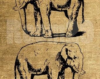 INSTANT DOWNLOAD Vintage Elephant Illustration - Download and Print - Image Transfer - Digital Sheet by Room29 - Sheet no. 472