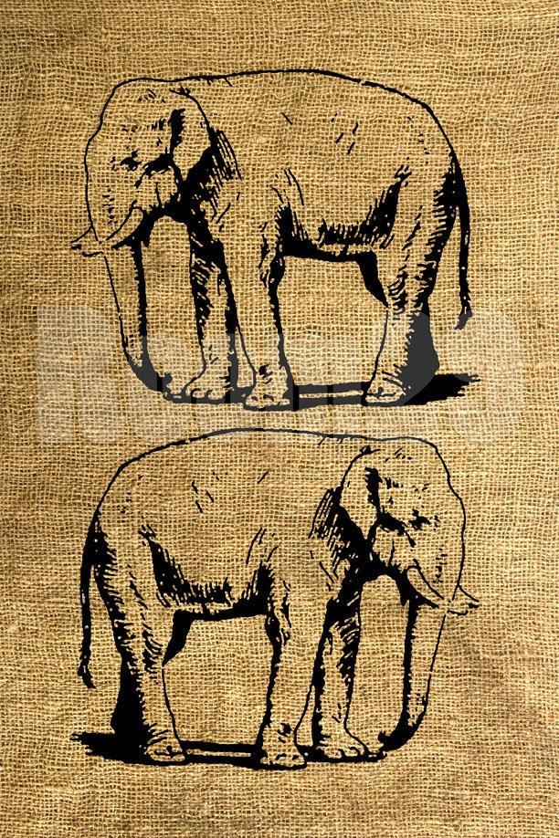 INSTANT DOWNLOAD Vintage Elephant Illustration Download by ... Vintage Elephant Illustration