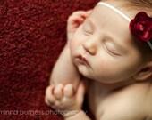 baby girl maroon headbands, newborn maroon headband, baby head band