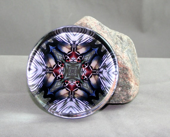Duck Glass Paperweight New Age Sacred Geometry Boho Chic Mandala Hippie Kaleidoscope Wood Duck Wonder