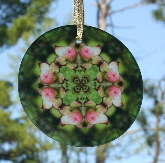 Suncatcher Pitcher Plant Boho Chic Mandala New Age Sacred Geometry Mandala Hippie Picture Perfect