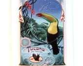 Tucana the Toucan Print of Original Illustration