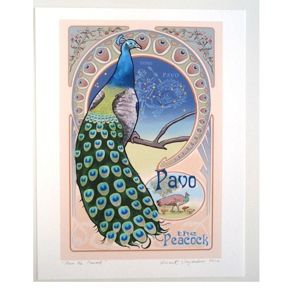 Peacock Art Nouveau Pavo the peacock print of original art nouveau ...