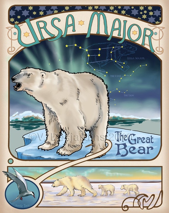Polar Bear Print of Original Illustration