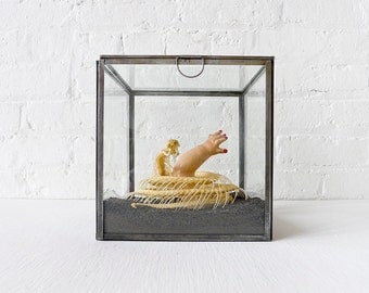 25% SALE - TOO LATE to Save the Baby- Cobra Skeleton Preserved in Glass Display Box with Baby Doll - One Of A Kind
