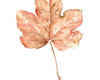 Original 7x9Watercolour aUTUMNAL mAPLE lEAF 2  .. . NOT A PRINT ..Original Painting