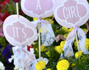 Girly Pink Baby Shower PRINTABLE Party Yard Signs (INSTANT DOWNLOAD) by Love The Day