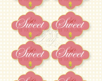 Ice Cream Party PRINTABLE So Sweet Favor Tag (INSTANT DOWNLOAD) by Love The Day
