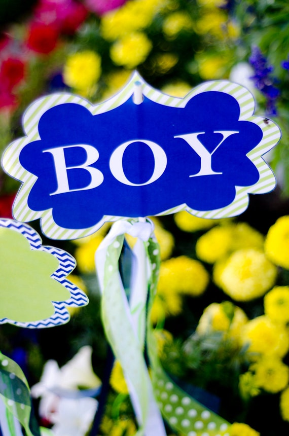 It's A Boy Baby Shower PRINTABLE Yard Signs (INSTANT DOWNLOAD) by Love The Day