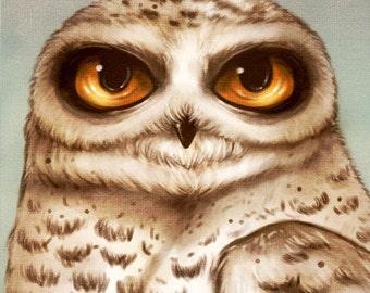 Snow Owl Big Eyes Art Print