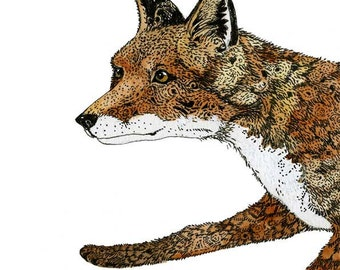 Giclee Fox Print Fox art print  illustration 11.7x16.5