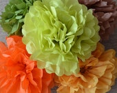 Tissue Paper Pom Pom Set of 30 Wedding Decorations - Your Colors
