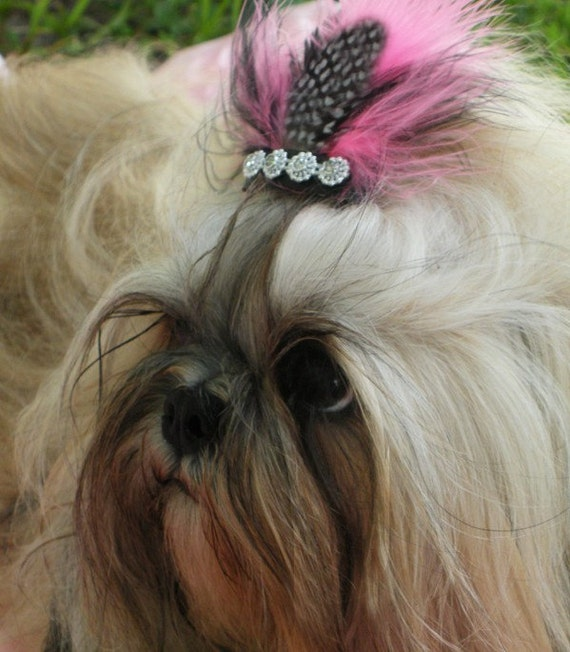Gia Rock Star pet pink and black feather hair clip