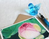 art card set - Lotus Bud - cards with signed archival colored pencil print - set of 6