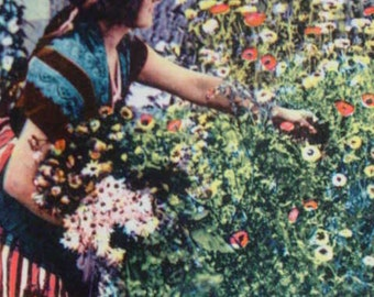 Photo Postcard French Woman Gathering Flowers in the Garden 1937