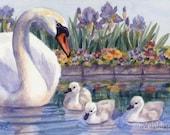 Swans Print 8x10 Baby Nursery Animal Art for Children by Janet Zeh