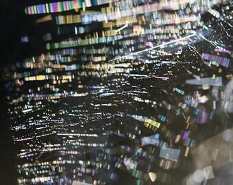 Spider Web Rainbow - Fine Art Photograph