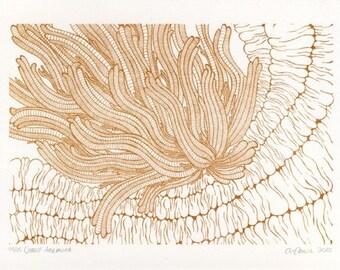 Copper Anemone Screenprint 5x7