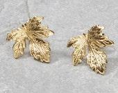 Greek Goddess Jewelry, Gold Fig Leaf Stud Earrings, Autumn Leaves, Autumn Jewelry, Greek Goddess Earrings, Grecian Jewelry, Grecian Wedding