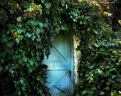 The Blue Door - Original Photograph - Garden Shed Charming Cottage Ivy Covered Walls Magical House Blue Green Turquoise Aqua