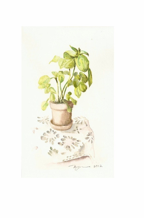 "Basil and Lace, Original Watercolor Painting, 6""x9"""