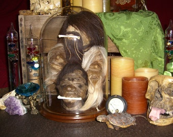 SALE 200 OFF - Shrunken Head Collection Under Glass Dome