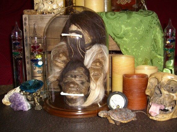 SALE 200 OFF - Shrunken Head Collection Under Glass Dome