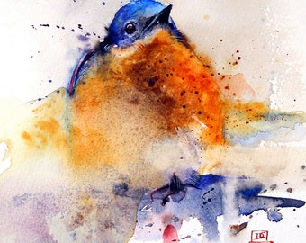BABY BLUEBIRD Watercolor Bird Art Print by Dean Crouser
